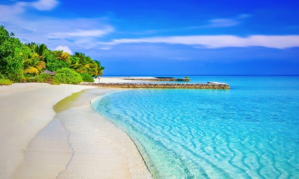 Stress di rientro delle vacanze. Affrontalo con l'aromaterapia.